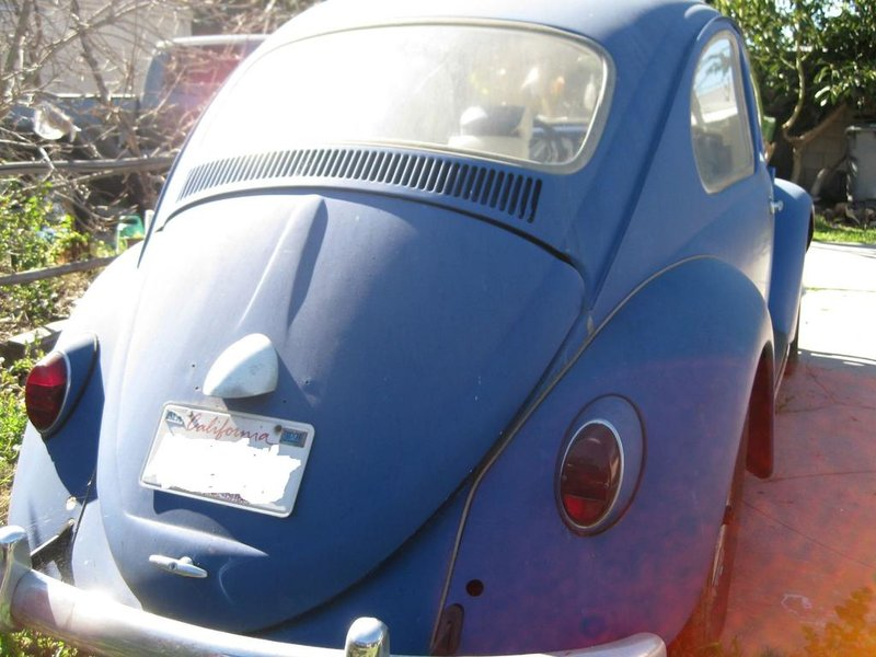 FS: 1964 bug-ants-car-project-015.jpg