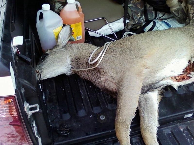 Let's see those hunting pics-pic_0064.jpg