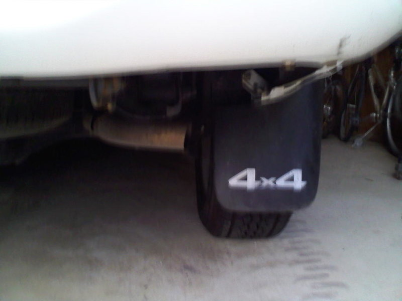 Add Exhaust Tip or No??-pipe.jpg