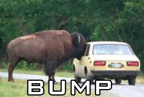 bump31