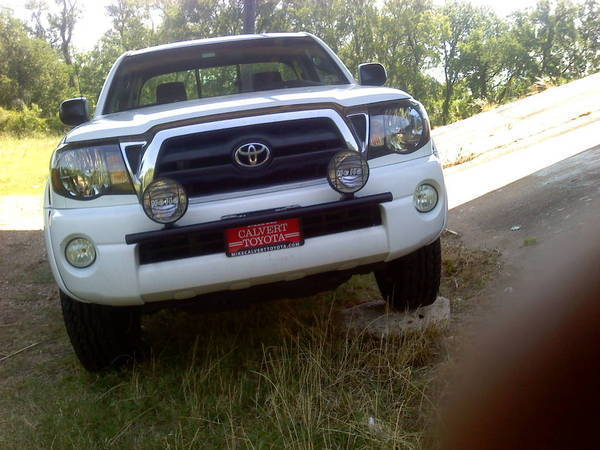 Wtb smittybilt street light bar tacoma world cool bar cool price 2nd truck its been on mozeypictures Images