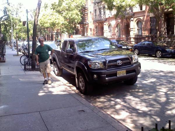taco chilling on 48th st in NYC..dad making sure she doesnt get towed