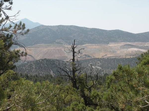 View from Garnet Hill, White Pine County, NV