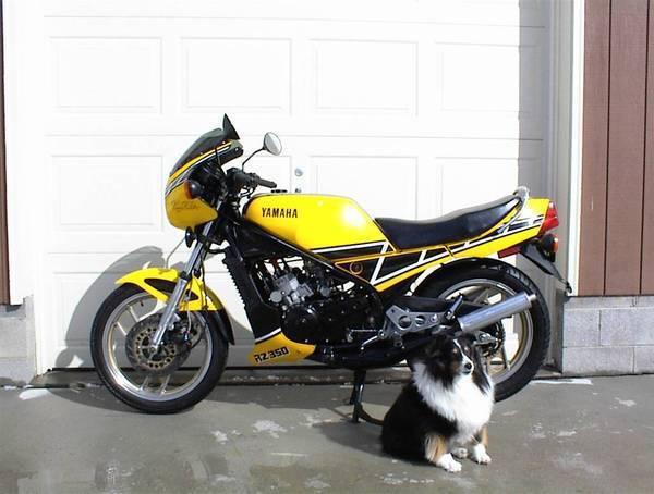 1985 Yamaha RZ-350