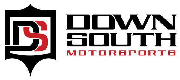 """DSM """"New"""" 2012 Logo"""
