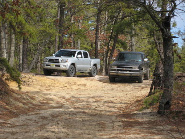 Wharton State Forest 2.27.2011