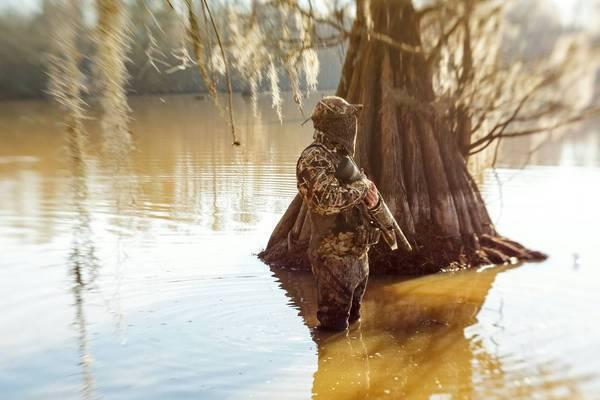 duck season 2012-2013