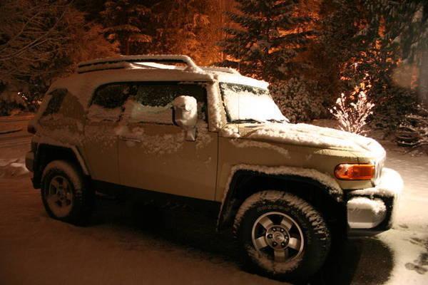 Snowy FJC