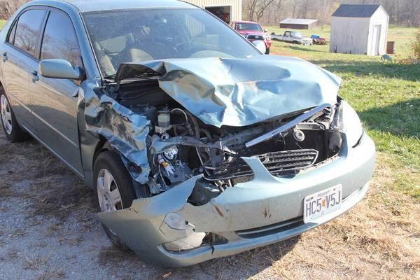 Deer hit