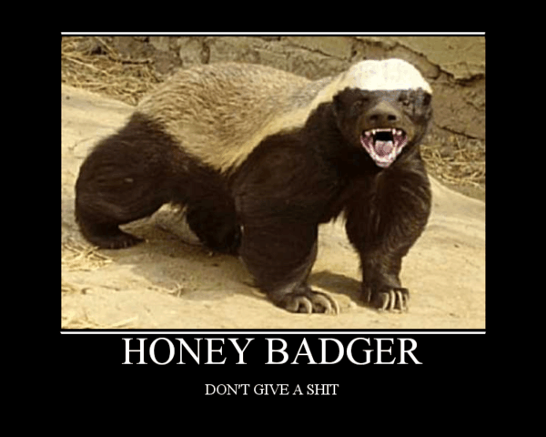 Honey badger dont give a shit - photo#3