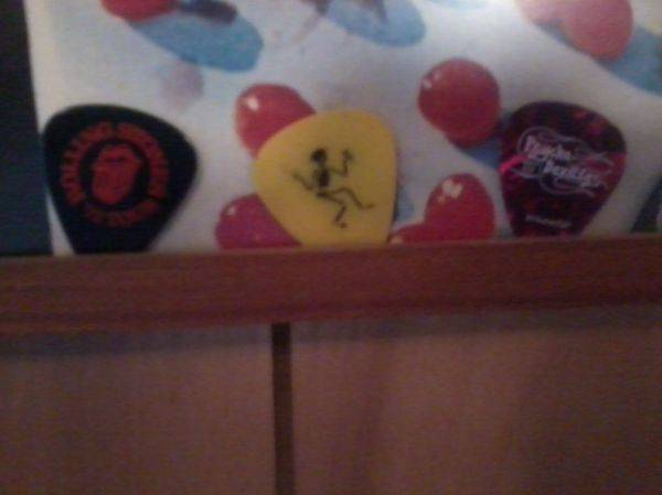 I got the prize last night. Caught Mike Ness' guitar pick.