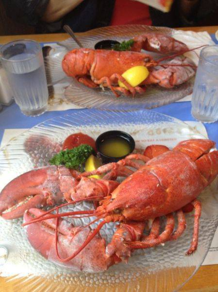 Mmmmm. 2 pound lobster at Mabel's Lobster Claw in Kennebunkport, Maine