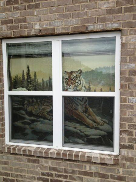 Geaux tigers!!