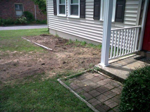 They dug up my azaleas! :pout: